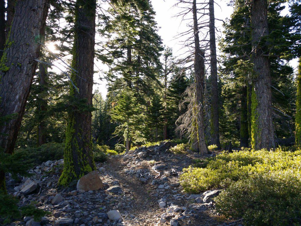 Lake Tahoe Trail