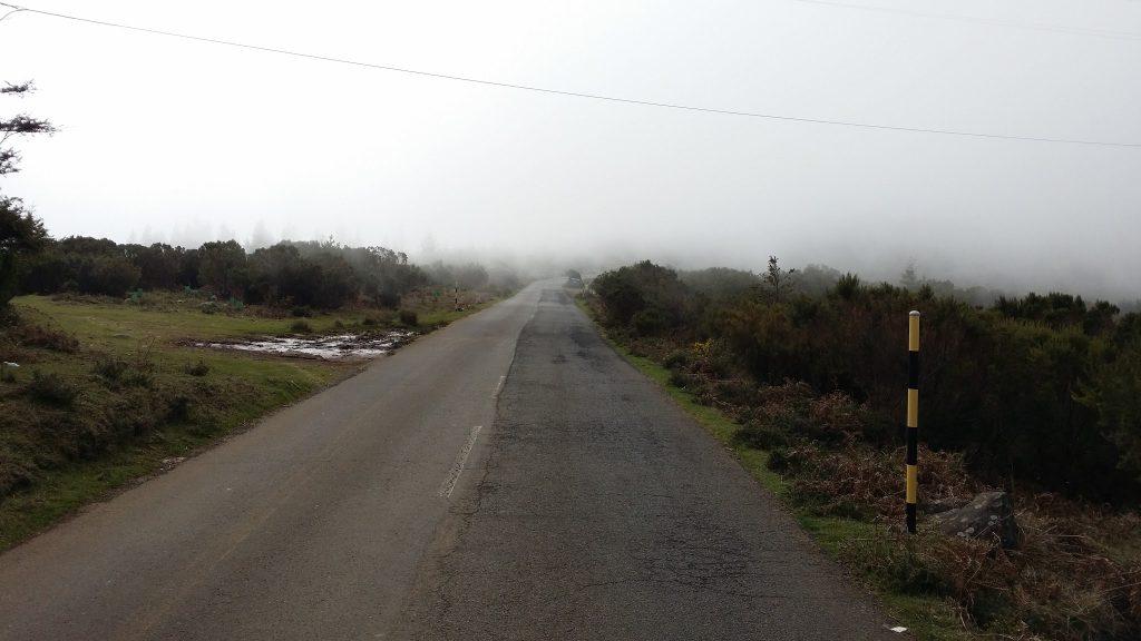 zum Pico do Arieiro